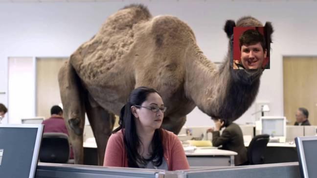 brendan camel.jpg