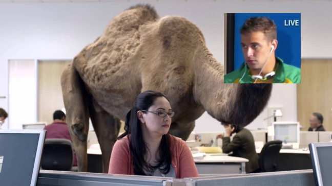 geico camel source copy.png