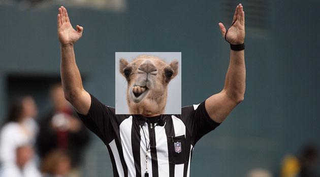 ref-camel