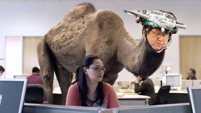 camel-jets