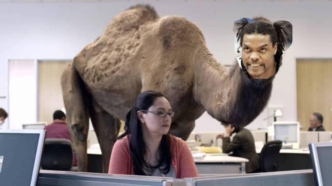 spreewell camel.jpeg